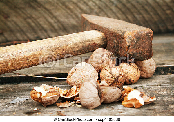 Walnuts and old vintage hammer - csp4403838