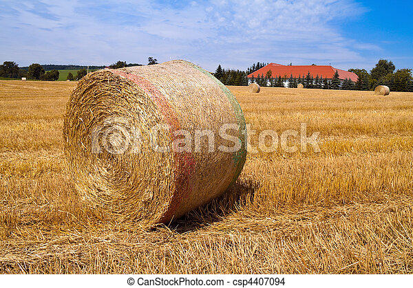 Agriculture. Field with bales of straw after harvest. - csp4407094