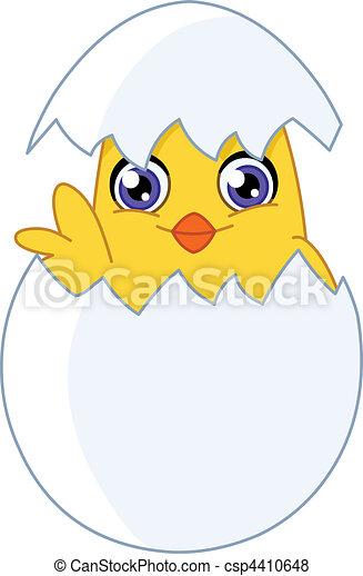 Chick - csp4410648