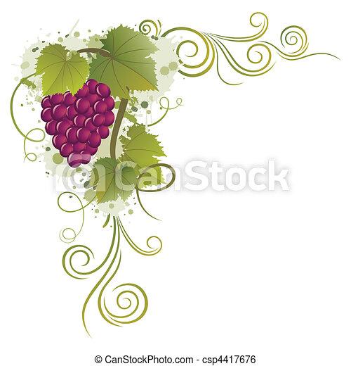 grape - csp4417676