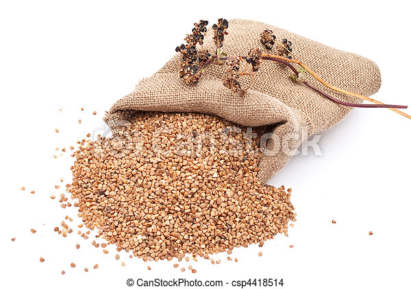 Burlap sack with buckwheat spilling - csp4418514