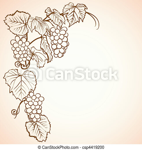 vintage background with grapes - csp4419200