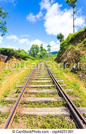 Sri Lanka Railways train tracks extend to vanishing point running thru tea plantations in hill country on a blue sky day in Haputale, Sri Lanka. Vertical