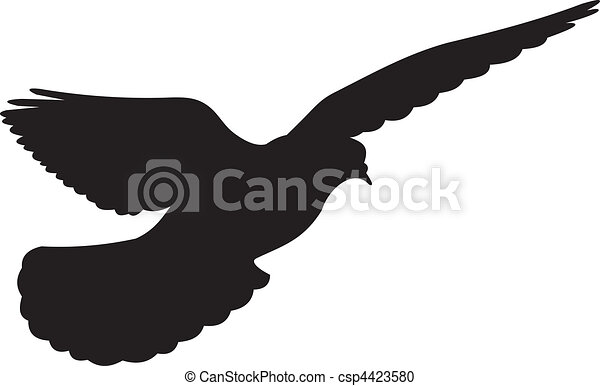 Dove vector - csp4423580