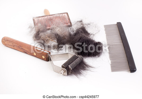 Grooming and trimming equipment for dogs with animal hair isolated on white background
