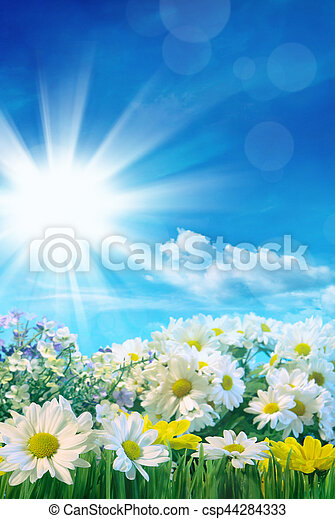 Spring flowers with blue sky - csp44284333