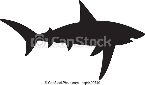 Shark vector - csp4429740