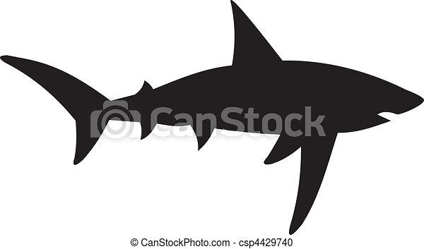 Shark vector - csp4429740
