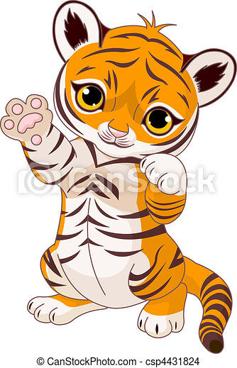 Cute playful tiger cub - csp4431824
