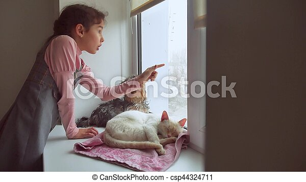 girl teen and pets cat and dog a looking out the window, cat pet sleeps