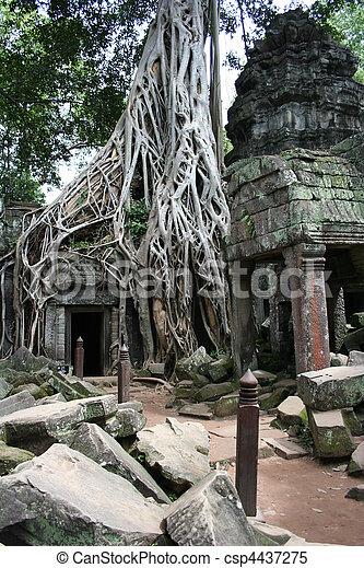 Angkor Wat ancient temples.