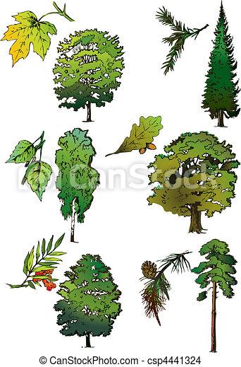 Trees. - csp444132