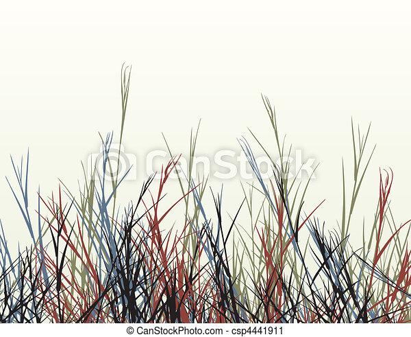 Rough grass - csp4441911