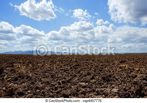 Plowed brown clay field blue sky horizon - csp4457776