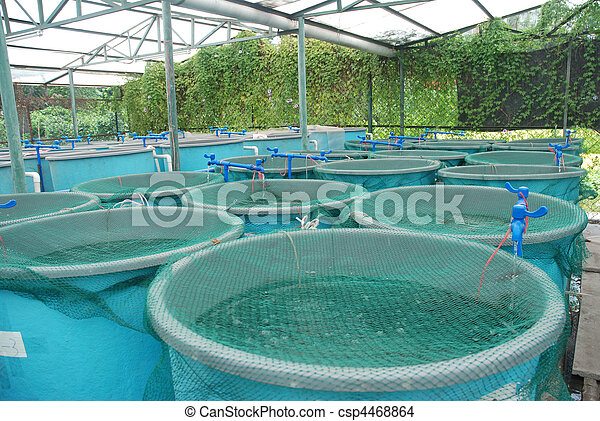 Agriculture aquaculture farm  - csp4468864