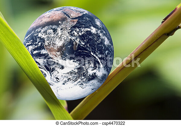 Living Planet Earth