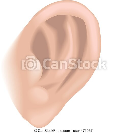 ear illustration - csp4471057