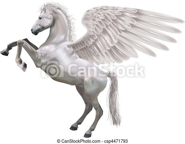 rearing pegasus horse illustration - csp4471793