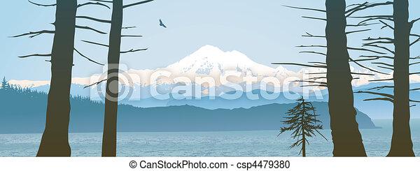 Mount Baker, Washington State panoramic - csp4479380