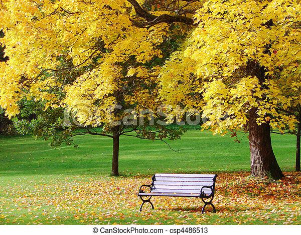City park in autumn - csp4486513