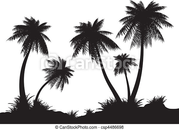 Coast. - csp4486698