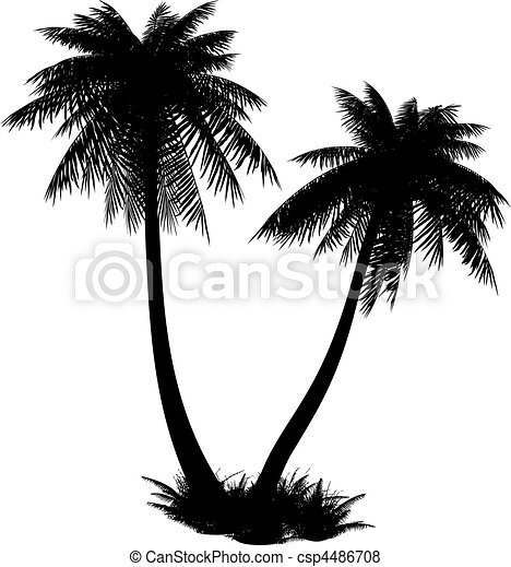 Silhouette of palms. - csp4486708