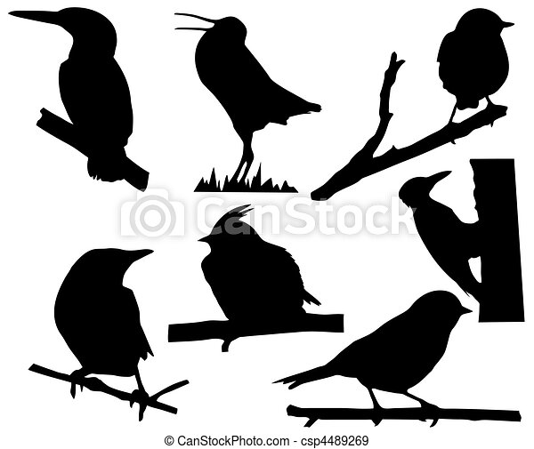 silhouette of the small birds on branch tree - csp4489269