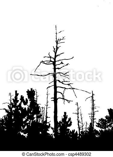 vector silhouette dry tree - csp4489302