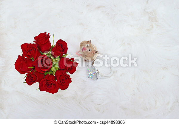 Hamster with Roses and Ring - csp44893366