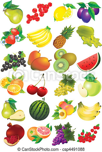 Fruits. - csp4491088