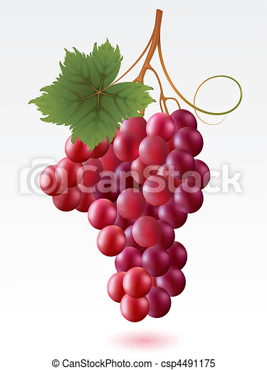 Grapes Clipart and Stock Illustrations. 24,887 Grapes vector EPS ...