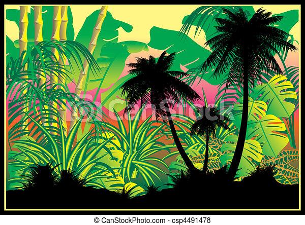 Jungle. - csp4491478