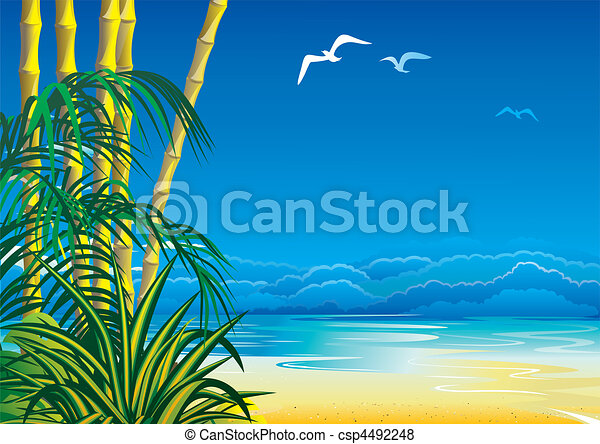 Jungle. - csp4492248