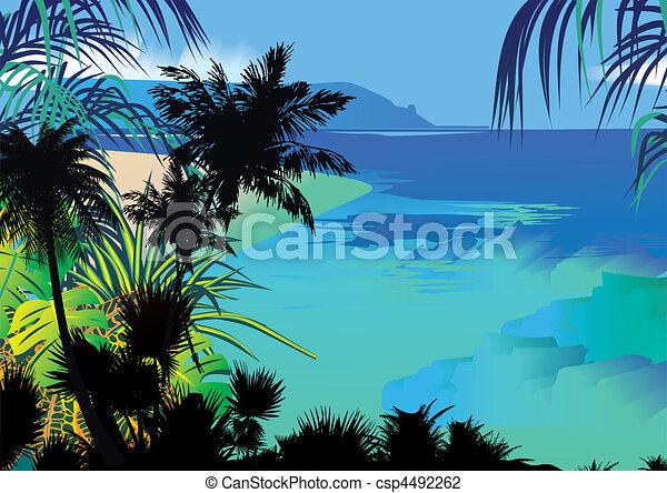 Ocean coast. - csp4492262