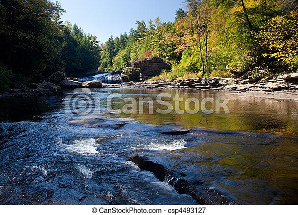 Swallow Falls Maryland - csp4493127