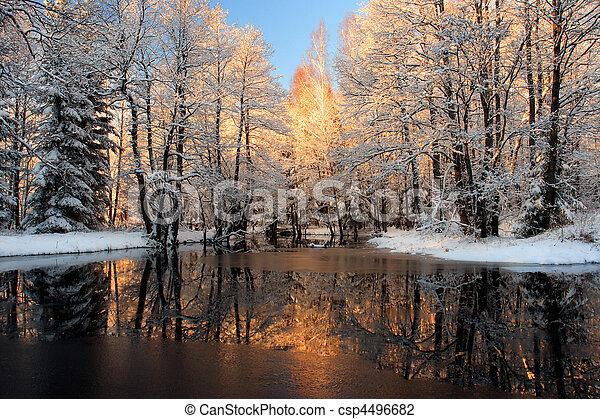 dourado, luz solar, Reflexão - csp4496682
