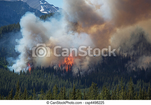 Forest fire in the Rocky Mountains - csp4498225