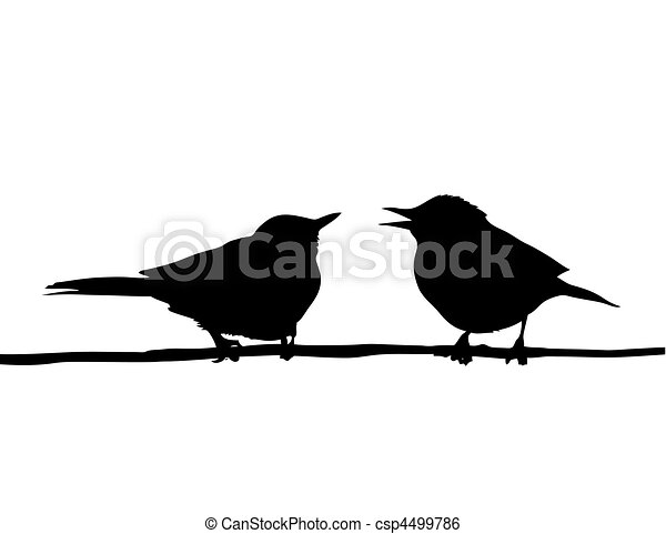 vector drawing two birds sitting on branch  - csp4499786