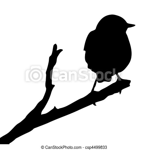 vector silhouette of the bird on branch - csp4499833