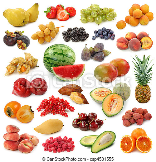 Fruits collection - csp4501555