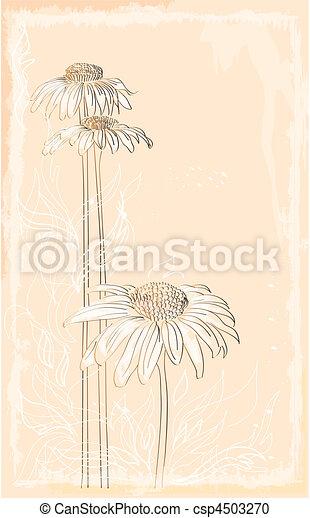 gerbera vintage style bouquet - csp4503270