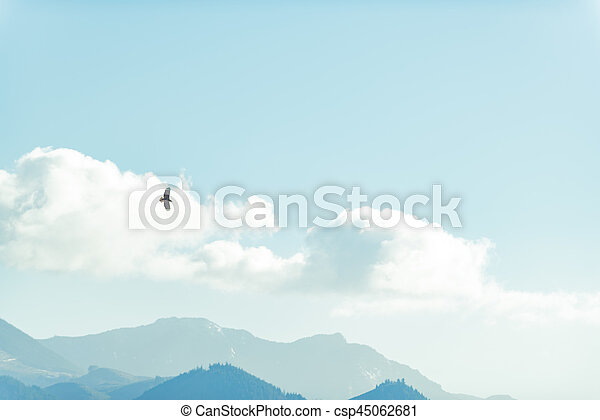 Proud eagle flying high in white clouds over tops of mountains covering with forest