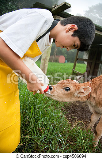 Young boy working on Costa Rican dairy farm - csp4506694