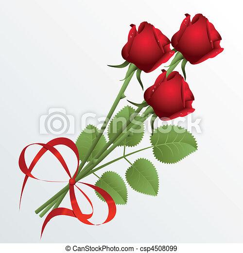 Roses - csp4508099