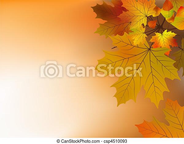 Autumn leaves, soft shallow focus. - csp4510093