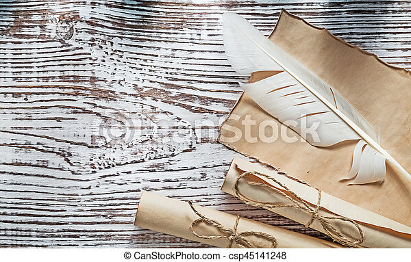 Medieval parchment paper rolls plume on vintage wooden board.