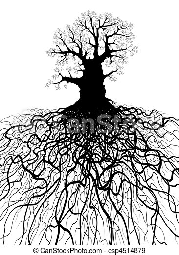 Tree with roots - csp4514879