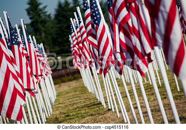 USA Memorial Day - American flags - csp4515116