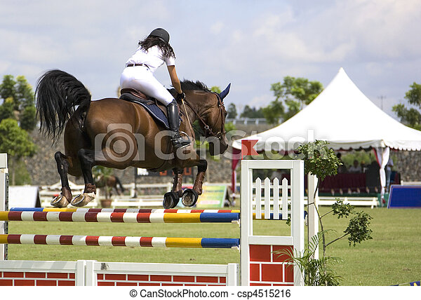 Image of an equestrian competitor in action.