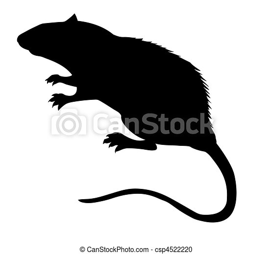 vector silhouette of the rat on white background - csp4522220